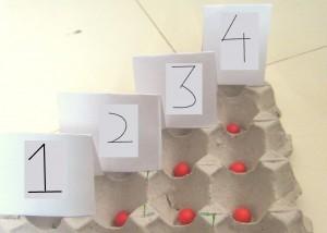 caixa de ovo 3