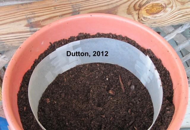Gardening # 1